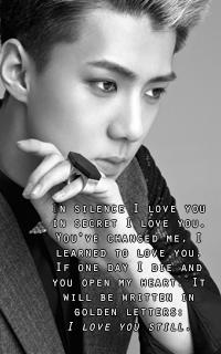 Oh Sehun [EXO] 200*320 991762SEHUNAVAT