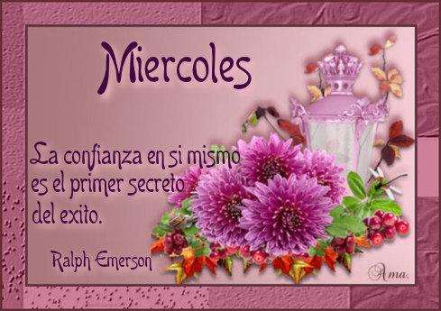 Flores con Frase 993959miercoles
