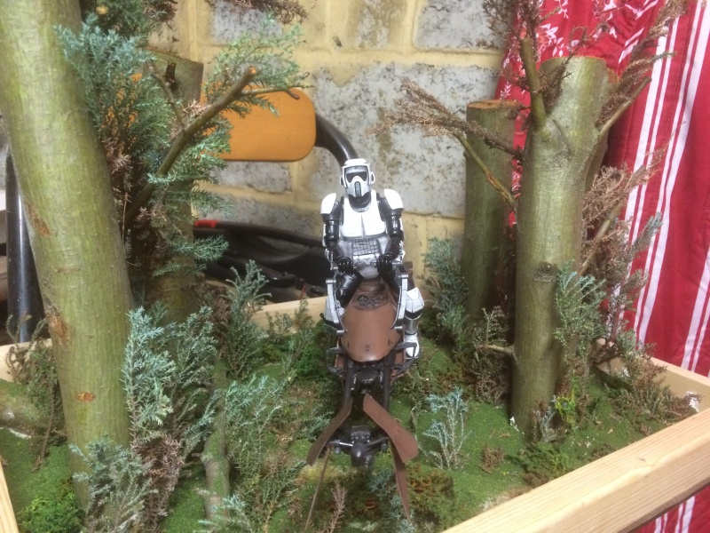 SCOUT TROOPER et SPEEDER BIKE 995726IMG0354