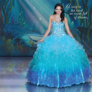 (Fashion) The Disney Forever Enchanted Collection & The Disney Royal Ball Collection 99573224p1