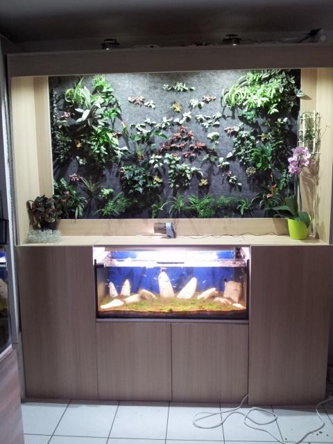 Le nouveau mur végétal de Olivetzou (projet fini à 98%) enfin les leds - Page 4 9963042012061912432
