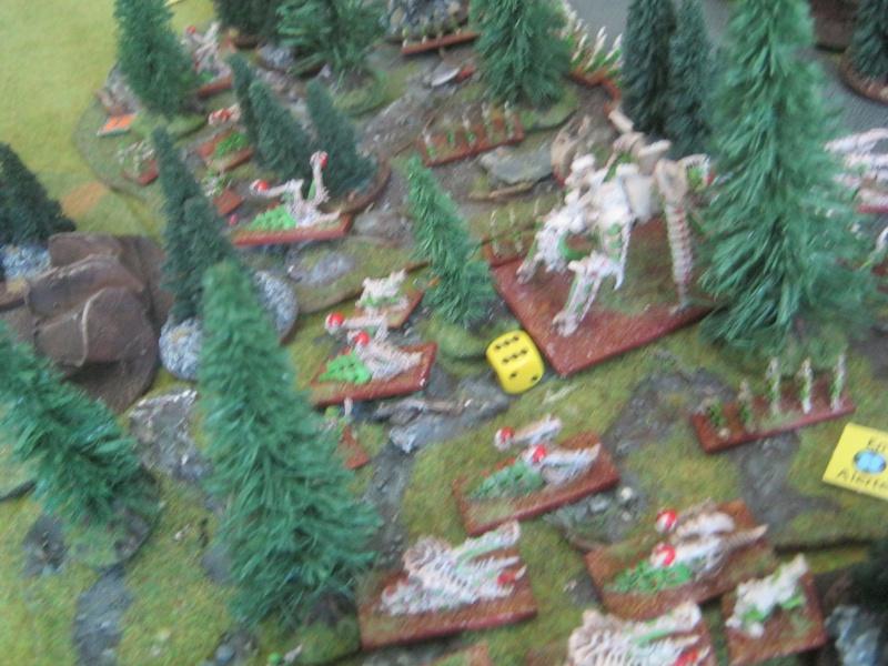 Assaut sur Zebra (campagne narrative) - Page 2 997637IMG0399