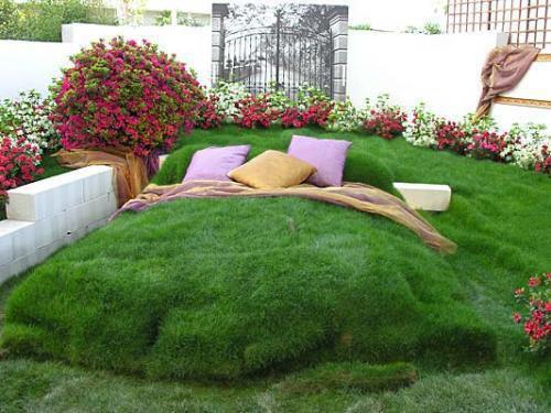 Un lit de verdure 998727Unlitdeverdure