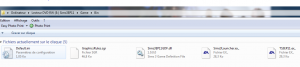 [MP-09/03/14]  Probleme Sims 3 en route vers le futur Mini_474897Capture