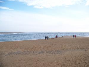 balade à la mer Mini_5323291007835