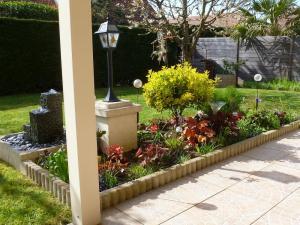 quelques plantouilles au jardin, en ce moment ! Mini_587367606
