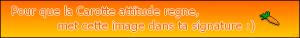 [SOLUTION COMPLETE] Niko - Les lingots cachés! Mini_656021CarotteAttitude