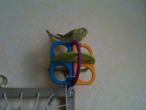 Aire de jeux verticale maison Mini_796832photo3