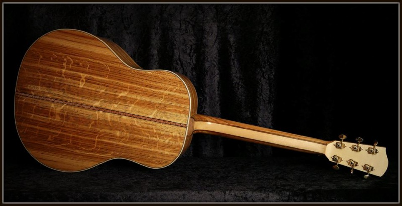 projet guitare Darmagnac en cours!! - Page 5 115844190596457643861603945766259371310742608434n