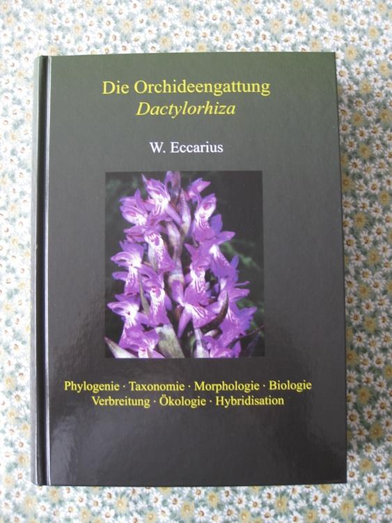 Eccarius - Die Orchideengattung Dactylorhiza 123548IMG3119