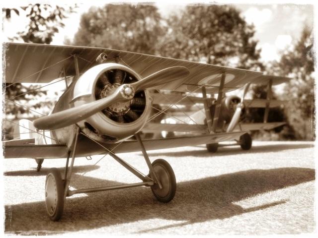 Nieuport 24 Roden 1/32 Modèle terminé. 124202Spia2592