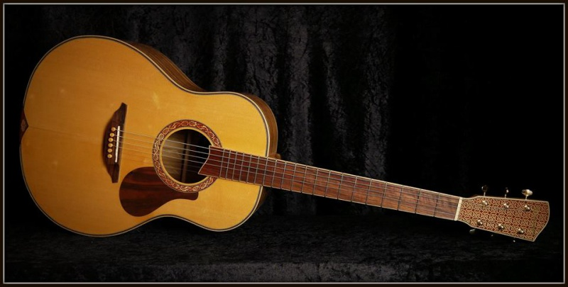 projet guitare Darmagnac en cours!! - Page 5 127335190593027643860403945882887932369059128647n