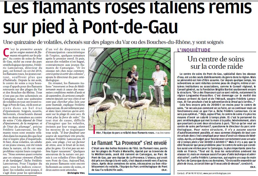 LA FAUNE ANIMALE MEDITERRANEENNE - Page 12 1336321740