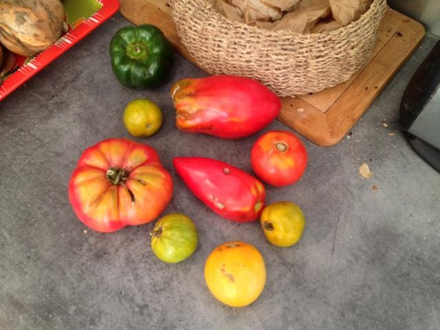 Solanum lycopersicum - les tomates - Page 5 135358tomates1