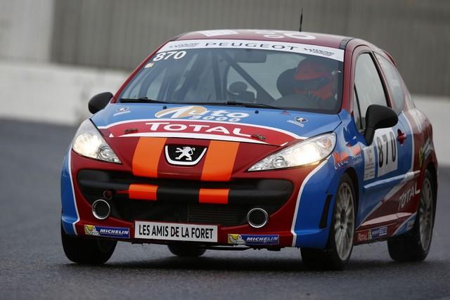 Rencontres Peugeot Sport - Quatre Titres Distribués A Nogaro ! 1462205828ade0de50c