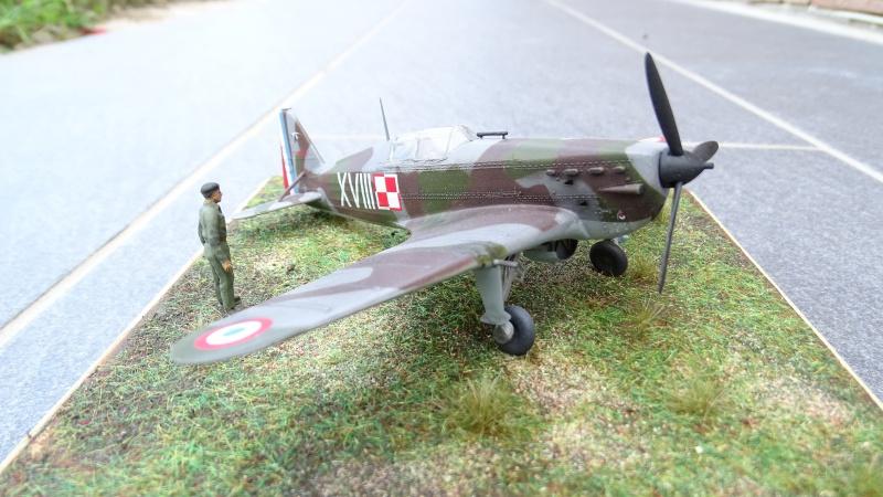 Morane Saulnier MS 406 GC I/2 Damblain Avril (Heller 1/72) 163463DSC02415