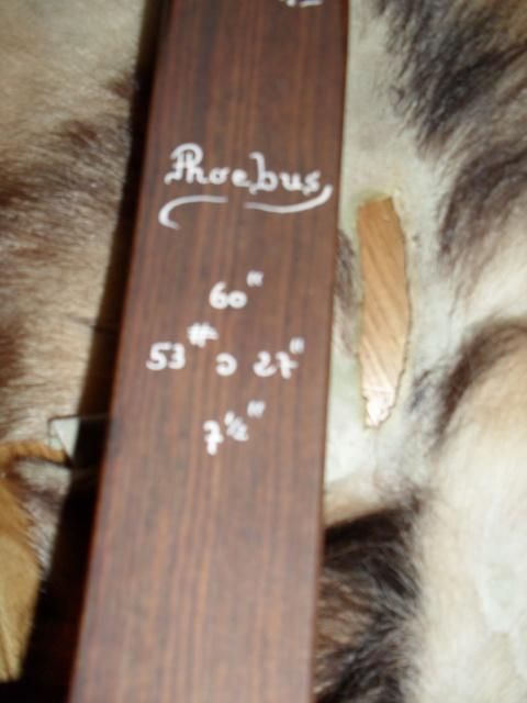 Info arc phoebus lone wolf - Page 3 168879SAM7575