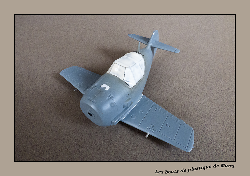 Bf 109 Tiger Model egg plane-FINI ! 176731P1020021