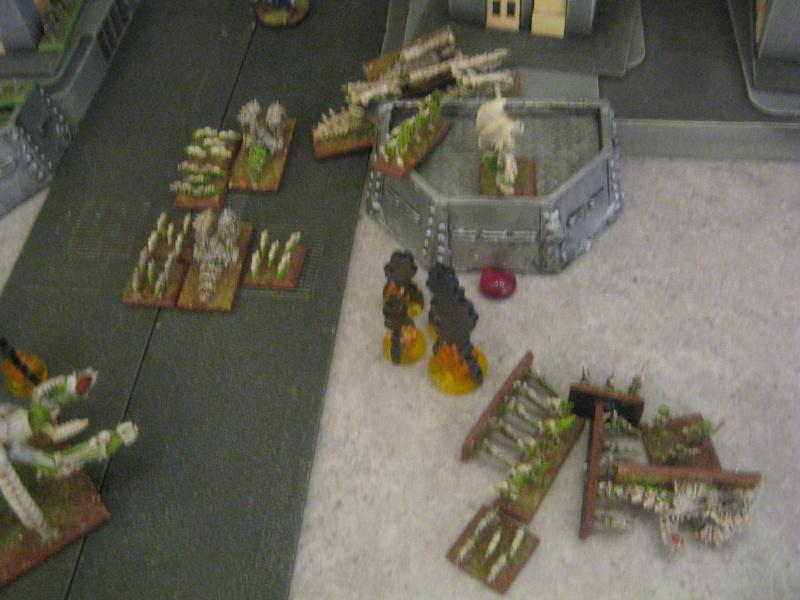 Assaut sur Zebra (campagne narrative) 180797sophia254