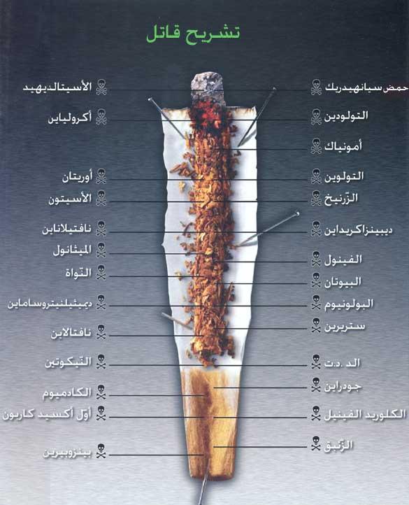 منتدى الاقلاع عن التدخين    forum arrêter de fumer - صفحة 3 1847521f2a184c5d
