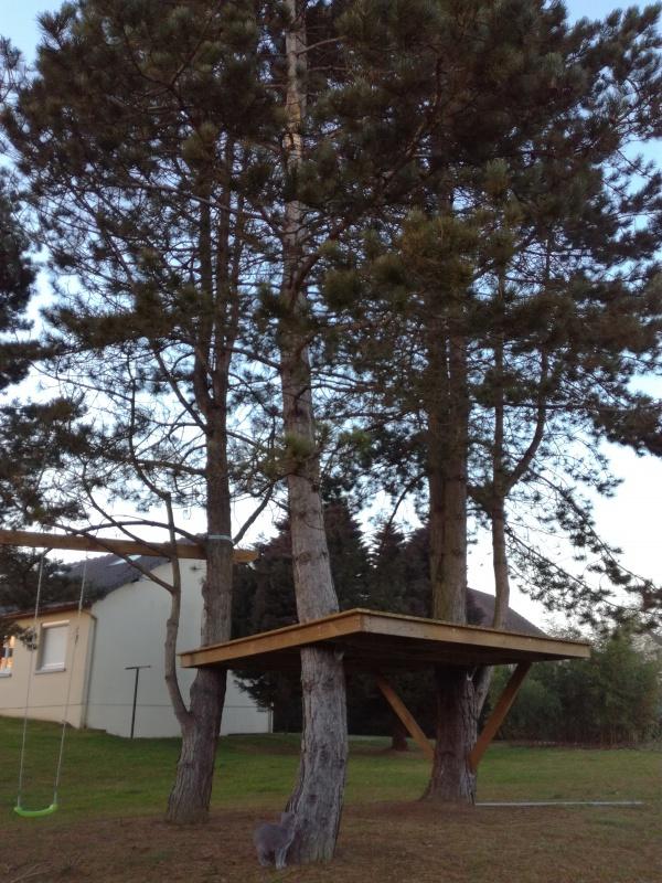 Projet de toboggant pour la cabane dans les arbres de mon fils, vos idées? 191125IMG20170123173301
