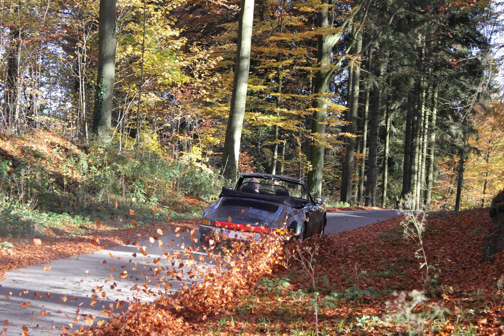 Porsche en automne - Page 8 193074143799141485985689298214042046275022258432o