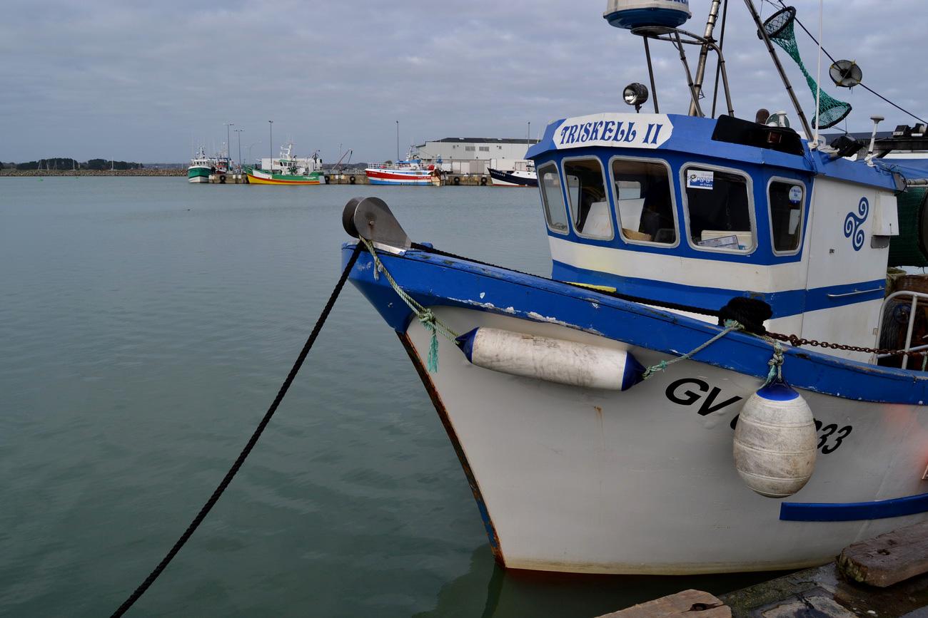 [VIE DES PORTS] Quelques bateaux de pêche (sur nos côtes Françaises) - Page 21 199055DSC15191