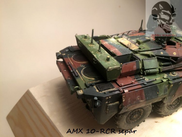 AMX 10 RCR SEPAR maquette Tiger Model 1/35 - Page 2 203511IMG3816