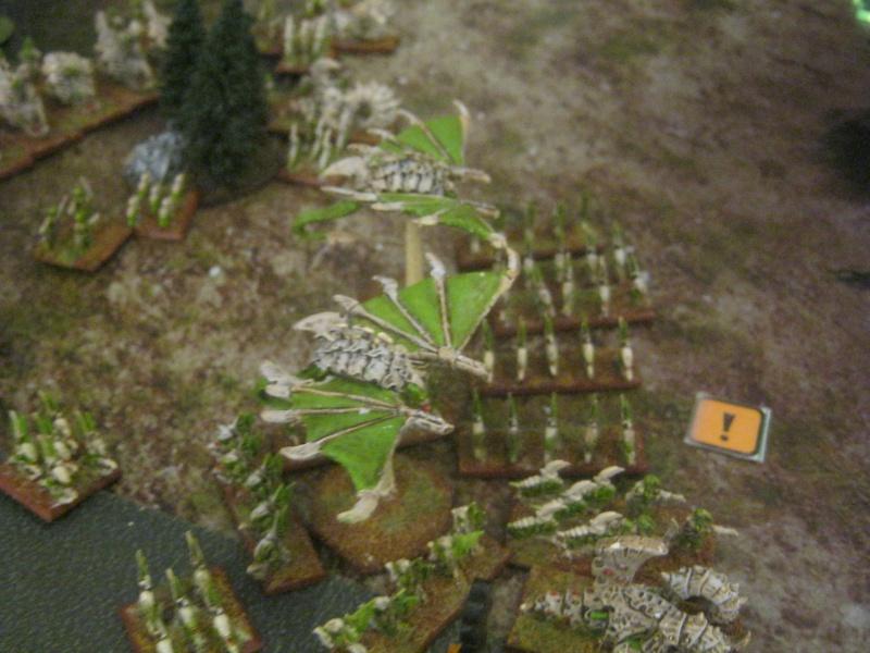 Assaut sur Zebra (campagne narrative) 206977wotantytysvssquats26