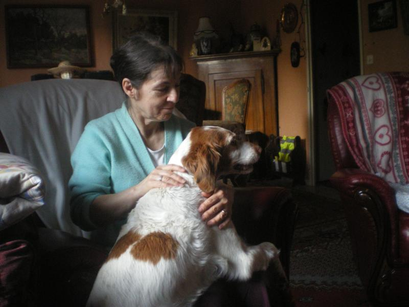 Deux mamies épagneules bretons, et leur famille dans le besoin 219633IMGP50921