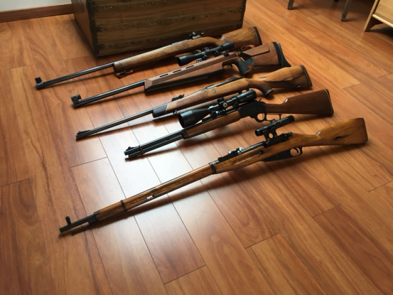 Présentation de ma collection de Rifle / Mosin - Schultz larsen - Marlin - Sako 243100IMG6662