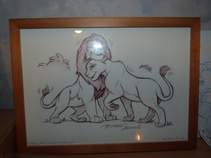 Le Roi Lion 244267P1020534