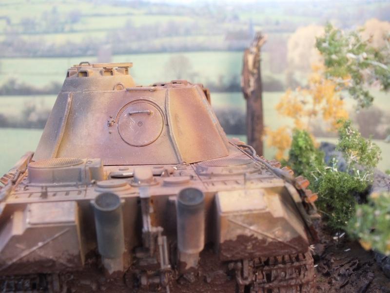Ardennes Belges ,  mi-septembre 1944... 250850DSCF7281