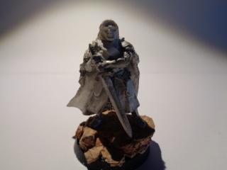 [Conversion] Figurines SdA ==> GoT : armée Stark 251307DSC00535