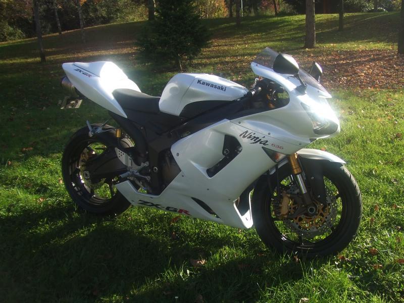 Mon zx6r blanc/blanc nacré 260483DSCF3845