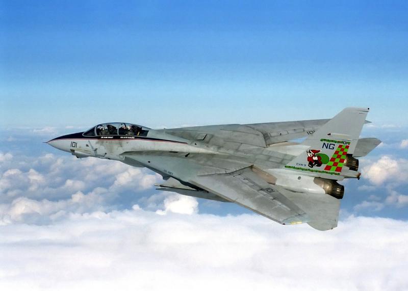 MCDONNELL-DOUGLAS F/A-18 HORNET  281966F14_Tomcat