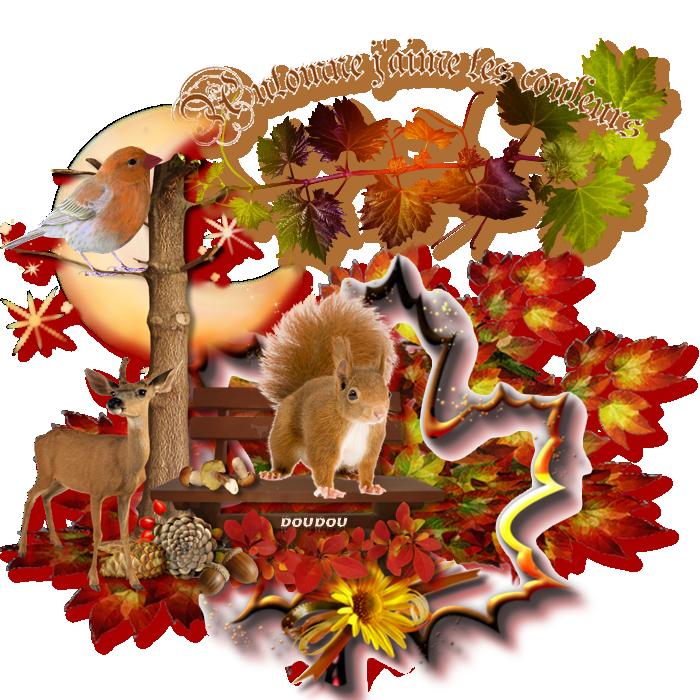 Les couleurs d'automne  289762tutodoudou555