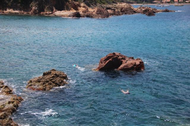 été 2014 = Italie-Corse 307459IMG5223c