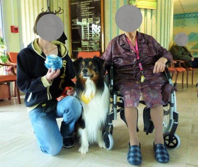 Impact du chien sur la santé humaine - Page 3 309723dustyuok