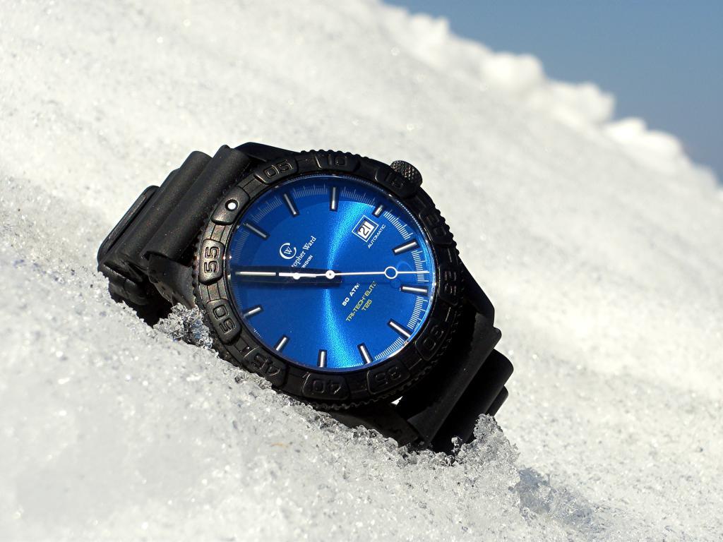 Aimez vous les bleues???!!!  - Page 2 311631C600neige