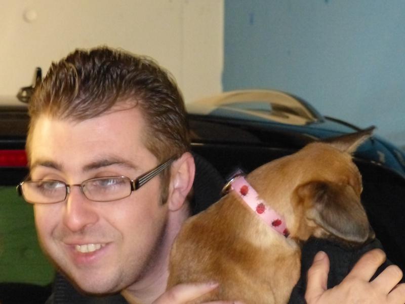 Betty, mini chien, soeur de Dixie 315770P1020989