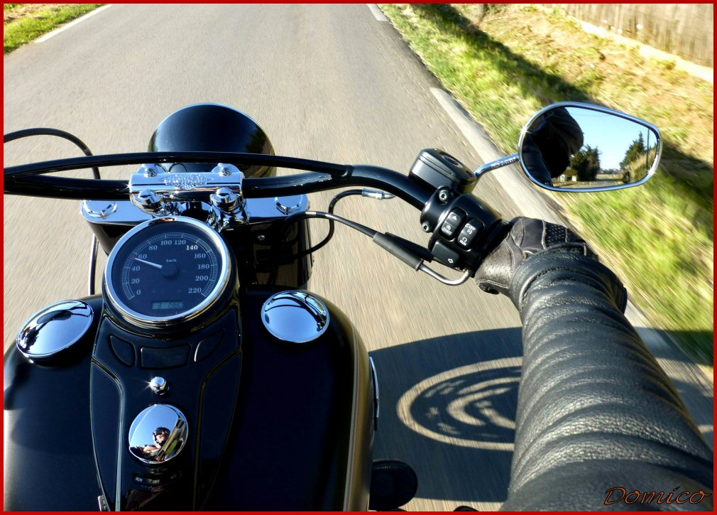 Softail Slim sous tous ses angles ! - Page 2 315892337