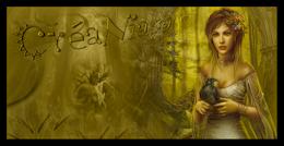 Forum : La magie des créations - Portail 317854logo1png