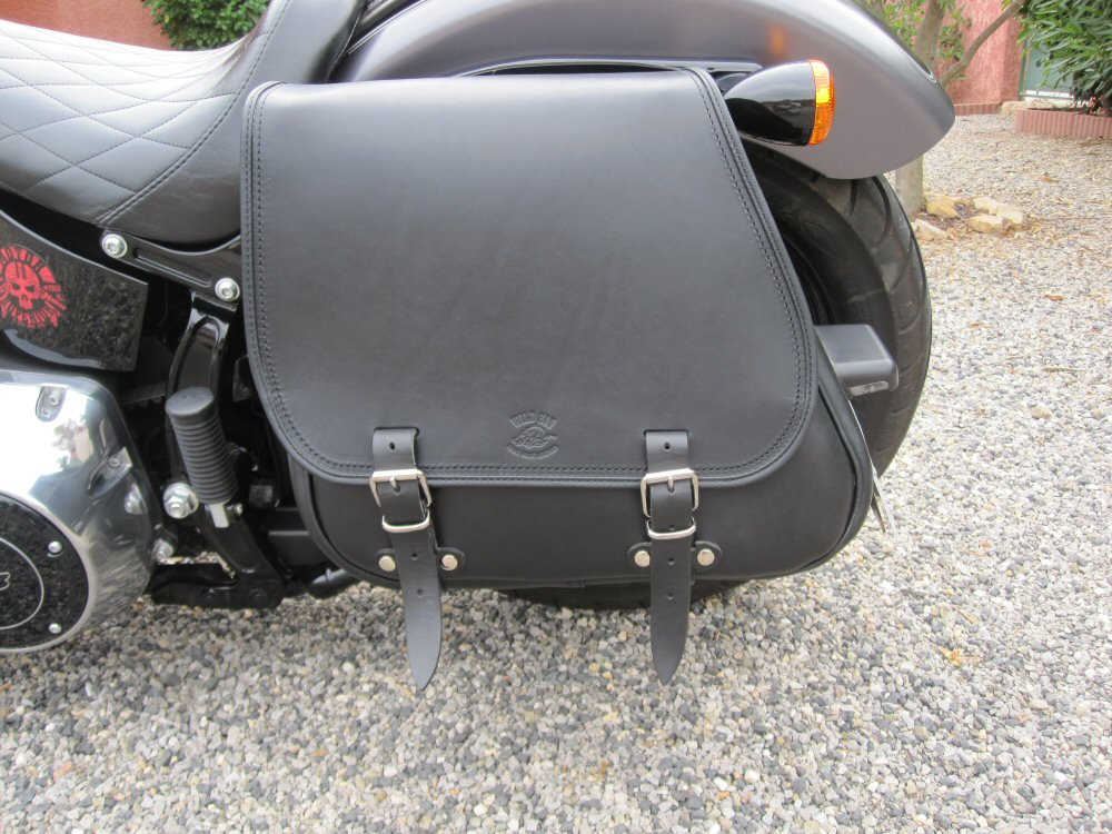 Softail Slim sous tous ses angles ! - Page 10 327840IMG1725