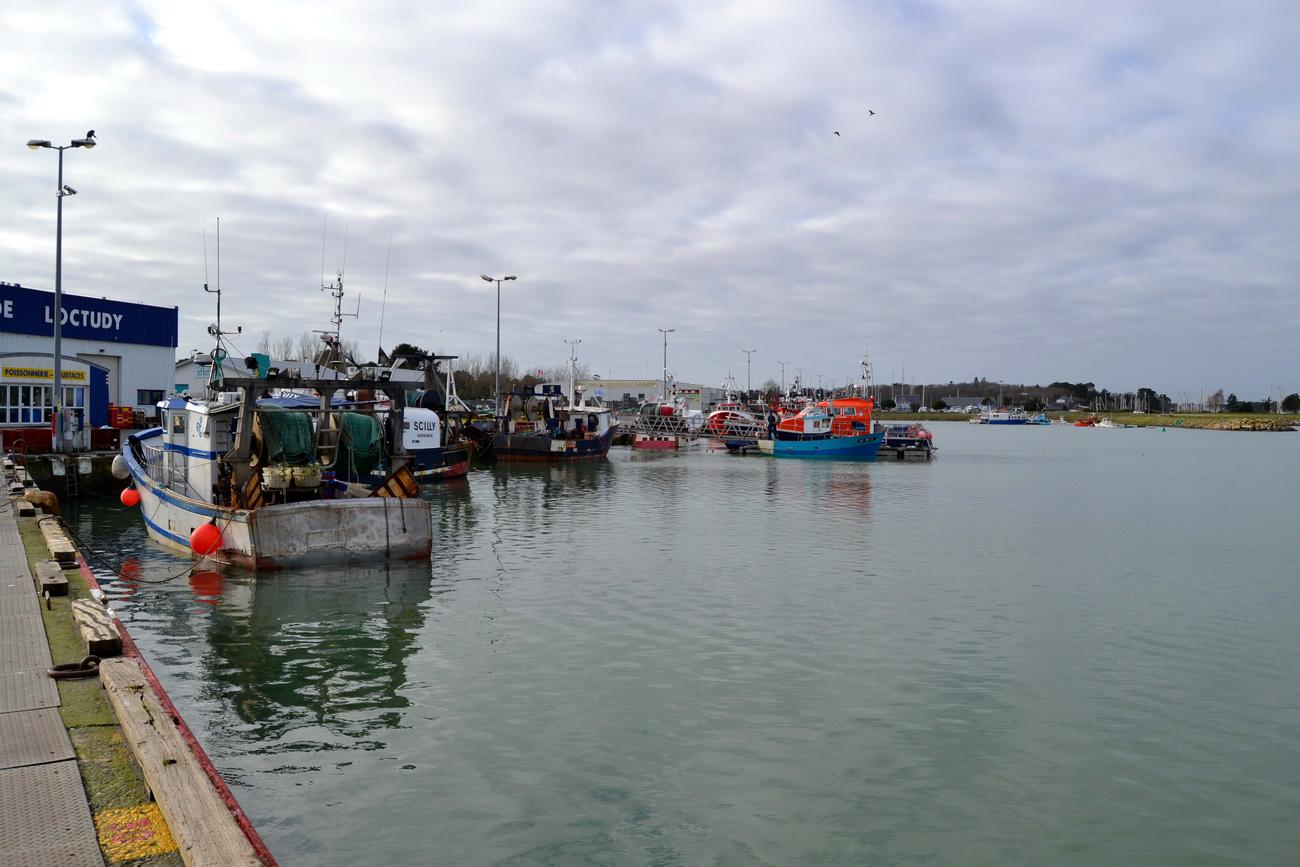 [VIE DES PORTS] Quelques bateaux de pêche (sur nos côtes Françaises) - Page 21 328198DSC15051