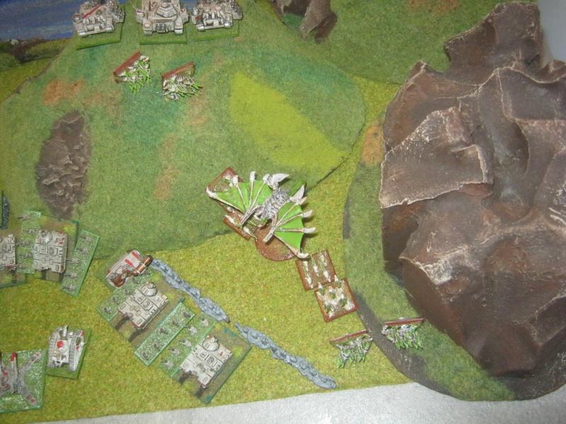 Assaut sur Zebra (campagne narrative) 329026IMG0028
