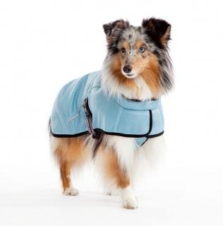 OligoDog, boutique en ligne de compléments et accessoires pour chiens  329906573