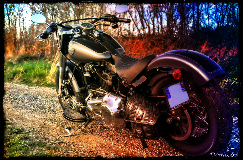 Softail Slim sous tous ses angles ! - Page 2 345593neoslim