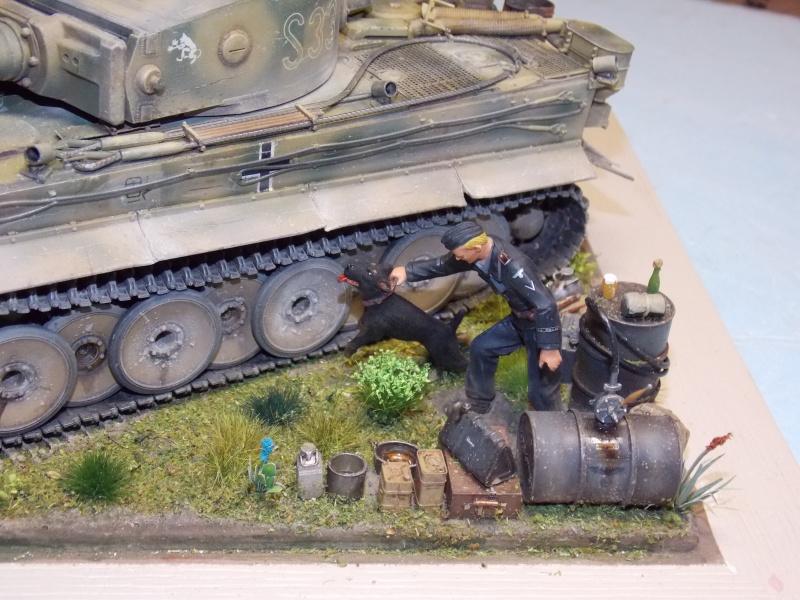 TIGRE S33  avant la bataille de Koursk juillet 43 (Dragon 1/35 dio DIODUMP) - Page 8 352509DSCN4743