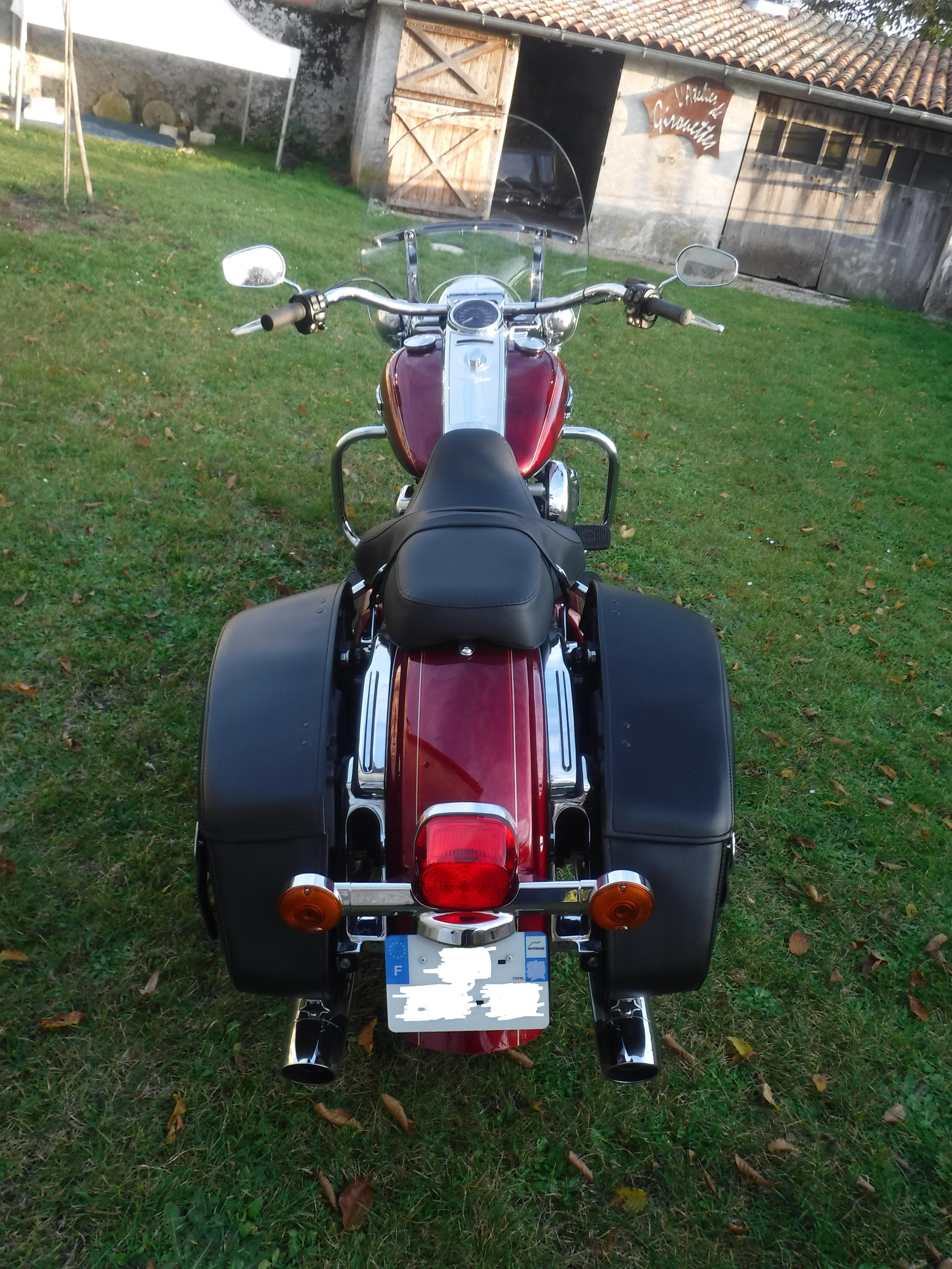 Road King uniquement, combien sur Passion-Harley  - Page 39 357324DSCF5084